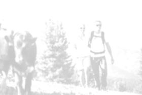 Wandern in Kaltenbach-Stumm